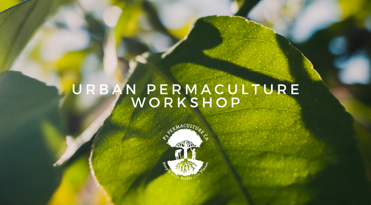 Urban Permaculture Workshop